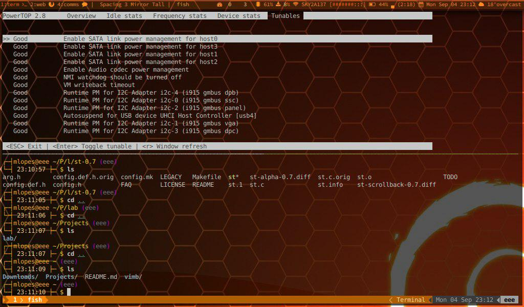 One of my Xmonad desktops